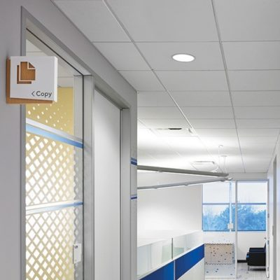 Weeded Privacy Film Adds Design Elements to an Individual Office