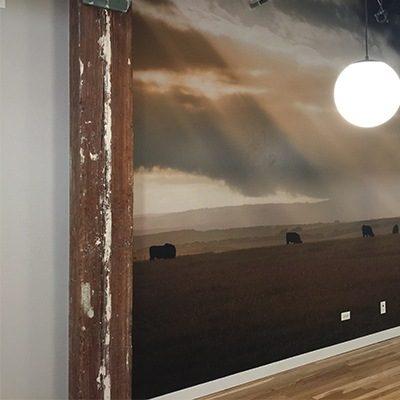 Teys USA Buffalo Wall Graphic Installed in Hallway.
