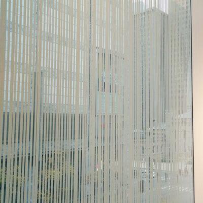 H&M Window Film Installed On Windows
