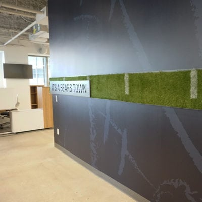 Wide View of Turf and Powder Coated Steel. Lines Also Painted by Cushing Team. Steel Bands Are Removable.