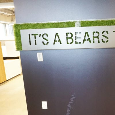 Front View of Installed Powder Coated Steel and Painted Turf With Bears Town Messaging