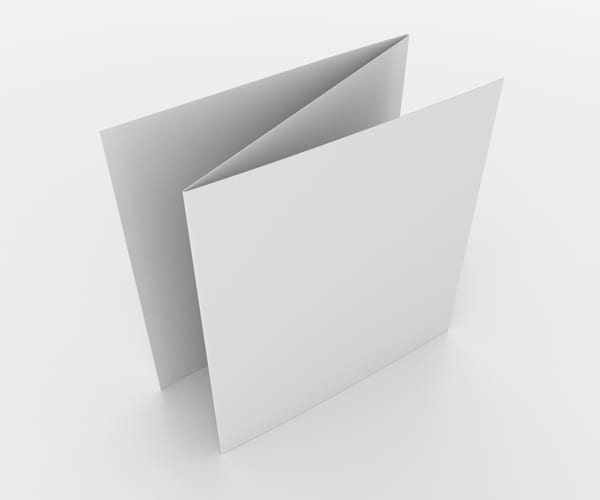 Z Fold Brochure Option