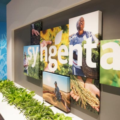 Side View of Sygnenta Reception Area Graphics