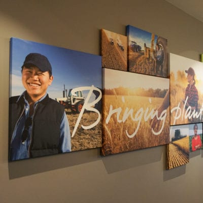 Conference Room Canvas Prints At Syngenta