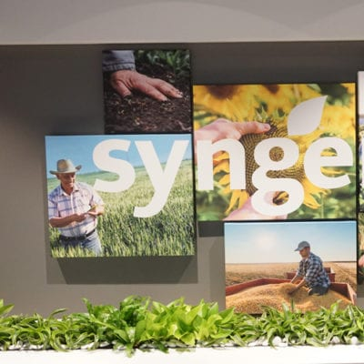 Creative Canvas Prints at Reception Area in Syngenta