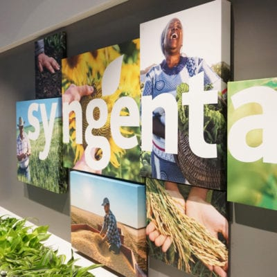 Canvas Prints Side View at Syngenta Office Reception