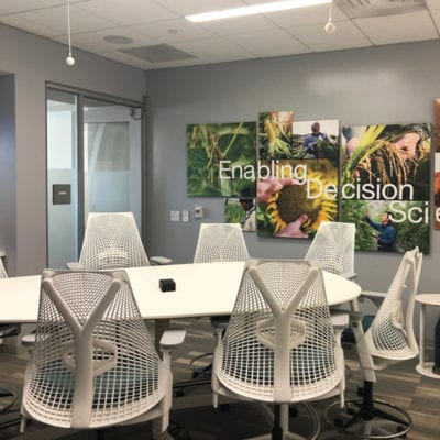 Canvas Prints at New Syngenta Office