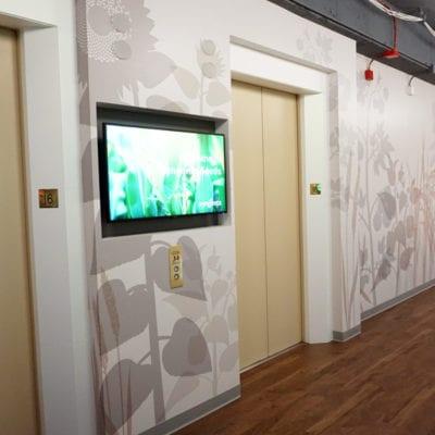 Wall Graphics Close Up Outside Syngenta Entrance