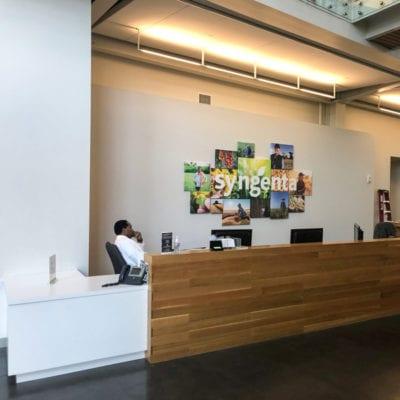Reception Area Signage at Syngenta